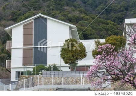 福山市立鞆小学校 49343020