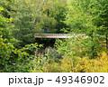 青木橋 戦場ヶ原 橋の写真 49346902