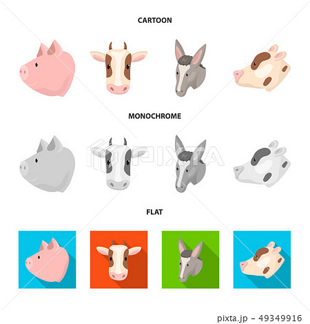 Vector design of agriculture and breeding sign. Set of agriculture and organic vector icon for stock 49349916