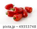 イタリアントマト サンマルツァーノ リゼルバの写真 49353748