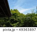 新緑輝く南禅寺境内 49363897