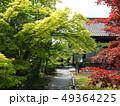 新緑輝く京都山科勧修寺 49364225