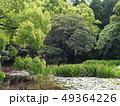 新緑輝く京都山科勧修寺 49364226