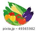 夏野菜セット 49365982