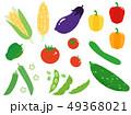 夏野菜 野菜 食材のイラスト 49368021
