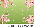 桜 花 春のイラスト 49369816