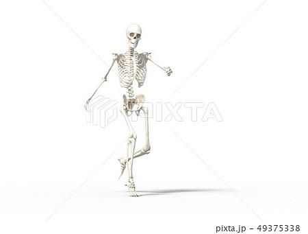 骸骨 骨格 スケルトンperming3DCG イラスト素材 49375338