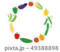 夏野菜 野菜 食材のイラスト 49388898
