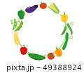 夏野菜 野菜 食材のイラスト 49388924