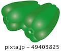 ベクター 野菜 ピーマンのイラスト 49403825
