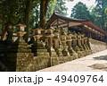 春日大社、着到殿付近の参道、奈良県 49409764