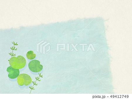 和紙-日本画-暑中見舞い-清涼感-水草 49412749