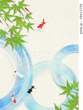 和紙-日本画-金魚-暑中見舞い-清涼感-水-青紅葉 49412756