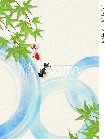 和紙-日本画-金魚-暑中見舞い-清涼感-水-青紅葉 49412757