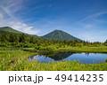 八甲田 風景 自然の写真 49414235