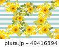 フラワー 花 ミモザのイラスト 49416394