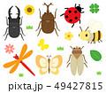 昆虫 セット 49427815