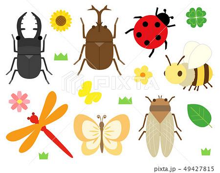昆虫 セット 虫のイラスト素材