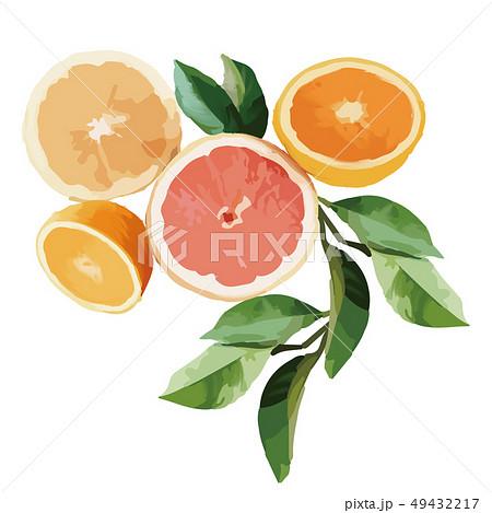 オレンジ色 オレンジ 橙 49432217