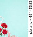 背景-カーネーション-母の日-ブルー 49445383