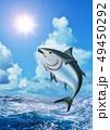 鮪 海 荒波のイラスト 49450292