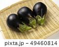 なす ナス 野菜の写真 49460814