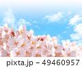 桜04 49460957