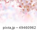 桜03 49460962
