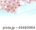 桜02 49460964