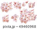 [キリヌキパス付]桜01 49460968