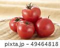 とまと トマト 赤の写真 49464818