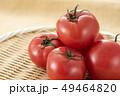 とまと トマト 野菜の写真 49464820