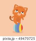 Cute cat illustration on pastel background. . 49470725