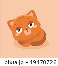 Cute cat illustration on pastel background. . 49470726