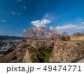 津山城跡 桜 津山市の写真 49474771