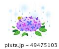 紫陽花 ベクター かたつむりのイラスト 49475103