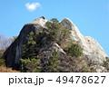 栃木県亀の子岩 49478627