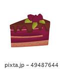 ベリー ケーキ チーズケーキのイラスト 49487644