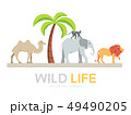 Wild life in flat design icon background.  49490205