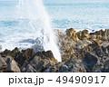 気仙沼 岩井崎 潮吹き岩 三陸復興国立公園 観光地 49490917