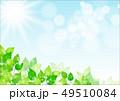 葉 新緑 春のイラスト 49510084
