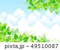 葉 新緑 春のイラスト 49510087