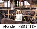 牛舎で働く女性 49514580