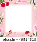 背景-カーネーション-母の日-ピンク-フレーム 49514618