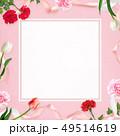 背景-カーネーション-母の日-ピンク-フレーム 49514619