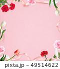 背景-カーネーション-母の日-ピンク-フレーム 49514622