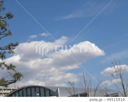 春の青い空と白い雲 49515010