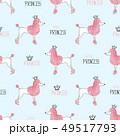 お姫さま プリンセス 姫のイラスト 49517793