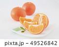 オレンジ フルーツ 果実の写真 49526842