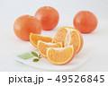 オレンジ フルーツ 果実の写真 49526845